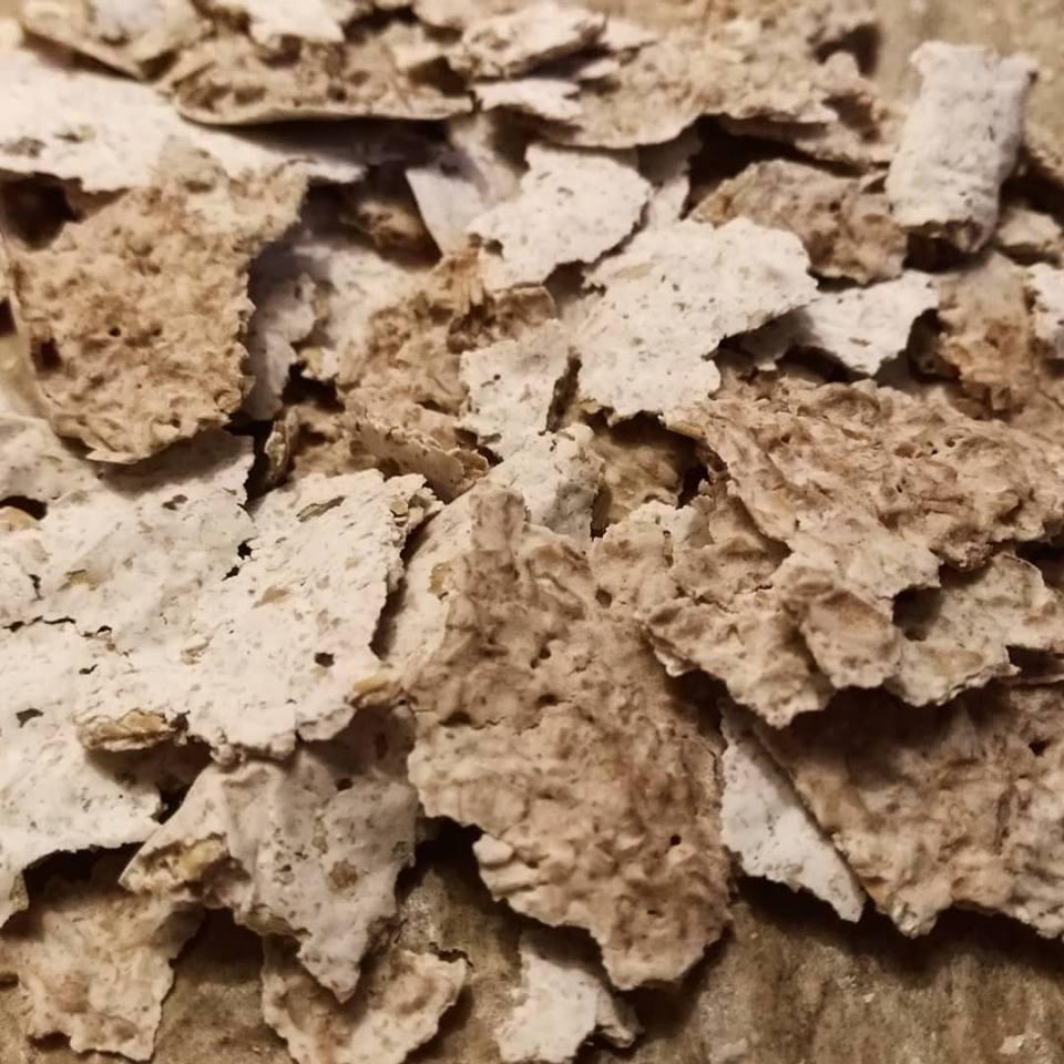 MajCake - zakwas chleb