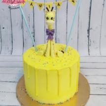 drip-cake-110